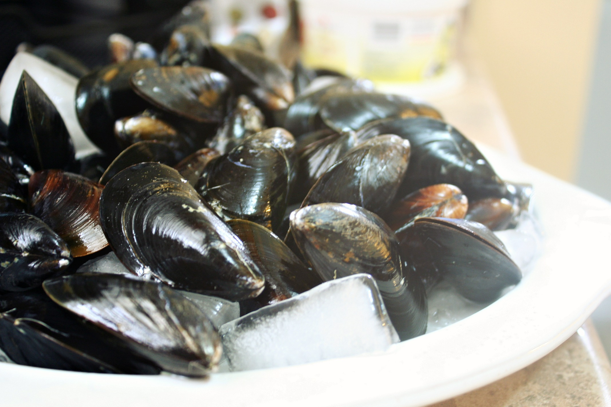 coconut ginger mussels 5