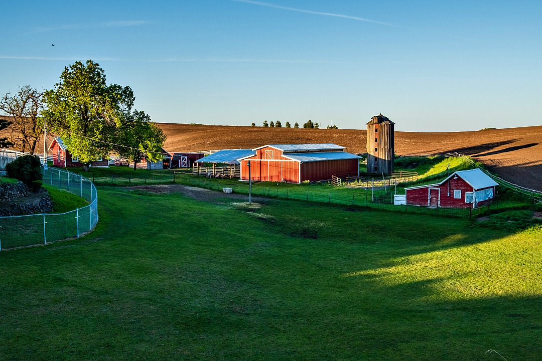 How to Support Local Farms — photo of farmland