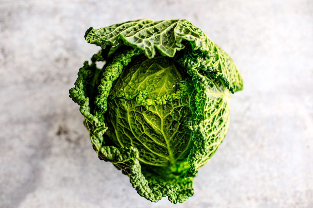 Head of savoy cabbage.