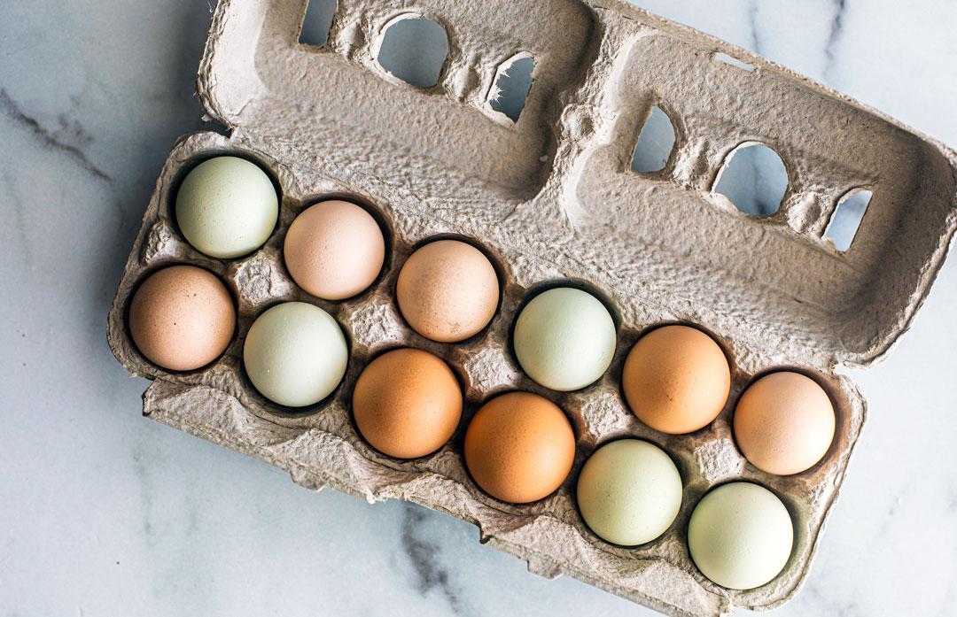 Carton of fresh colorful eggs.