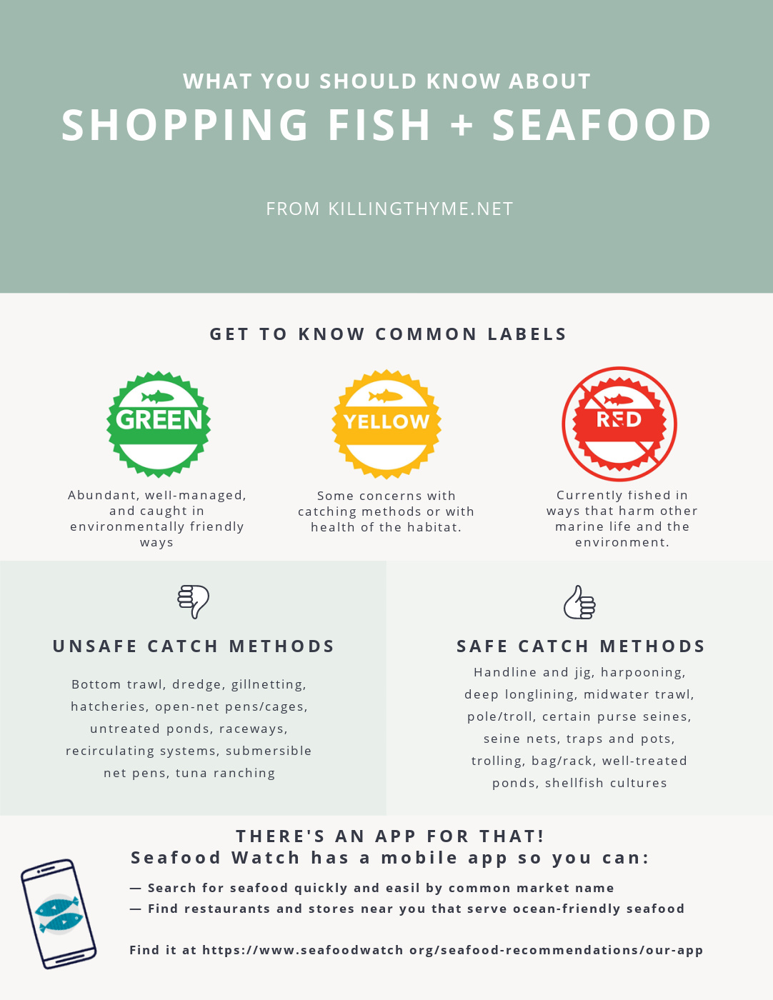 Infographic for shopping seafood.